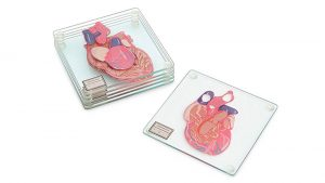 Anatomic Heart Specimen Coaster Set