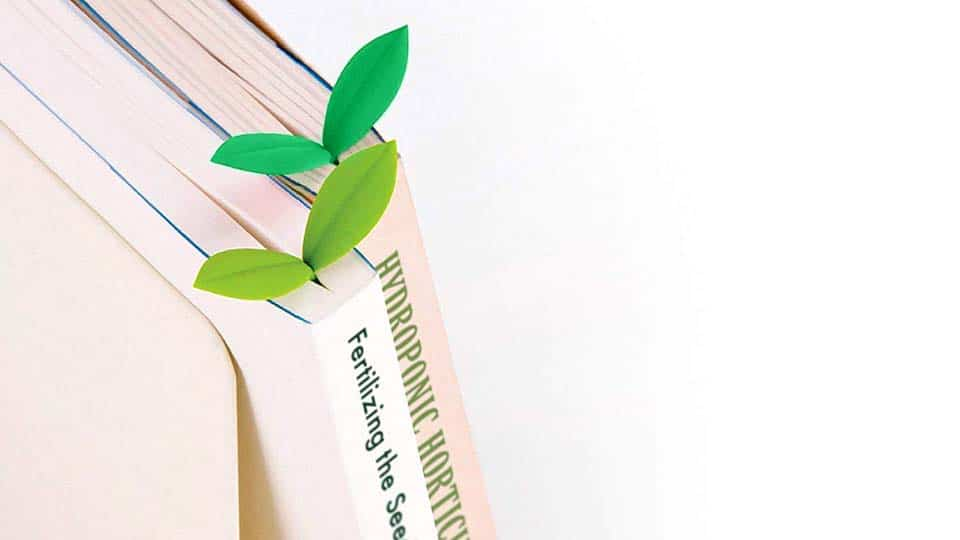 SPROUT the Little Green Bookmark