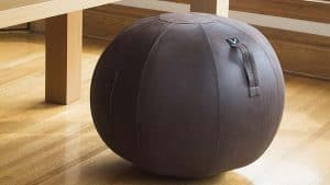 Vivora Luno Exercise Ball Chair